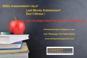 cheapestassignment@gmail,com