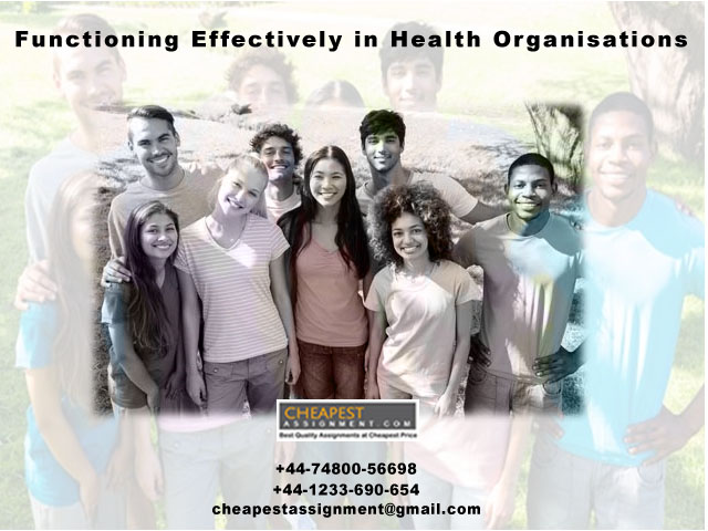 Functioning Effectively in Health Organisations