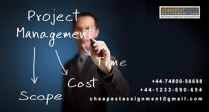 Project Management Help