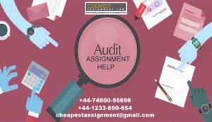ACC00715 Professional auditing SCU