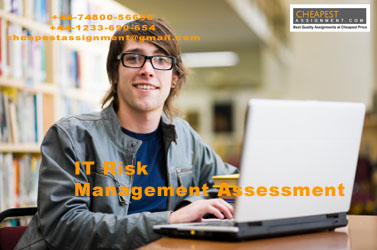 IT Risk Management Assessment