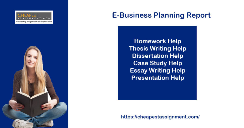 ITECH 3211 E-Business Planning Report